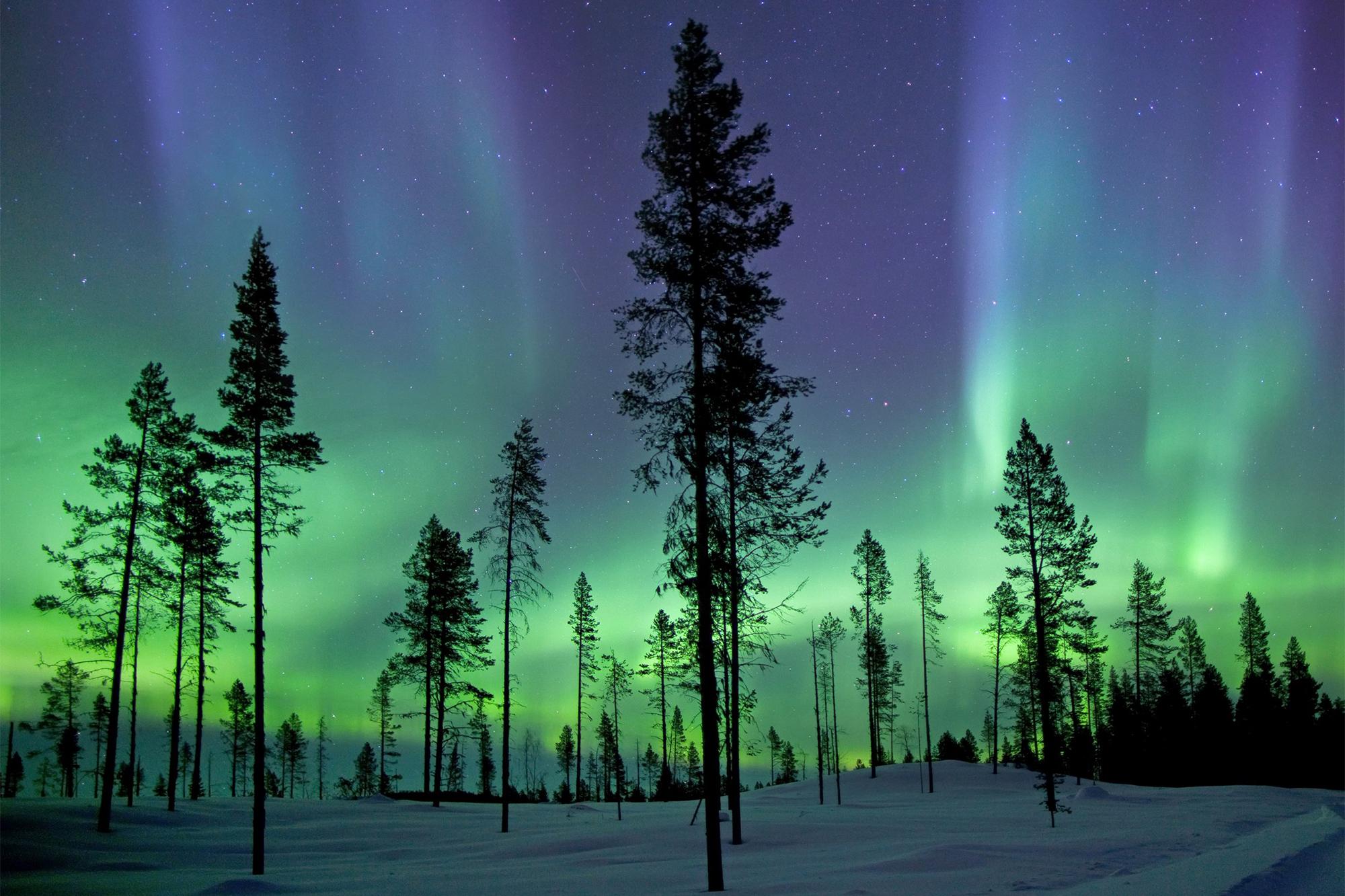 Aurora QNUPS
